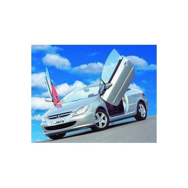 Bisagras puertas apertura vertical Peugeot 307 REF: TR866