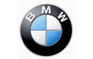 BMW GPS module