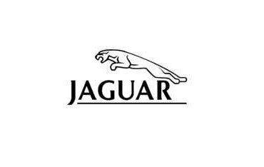 Jaguar GPS module