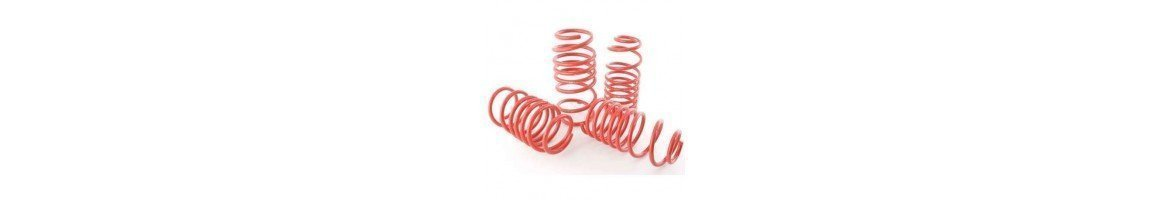 Shock absorbers springs