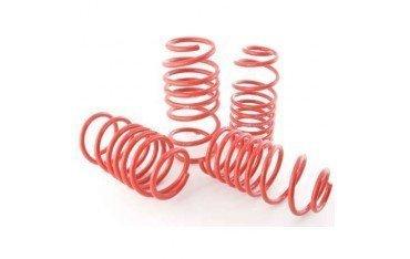 Shock absorbers springs